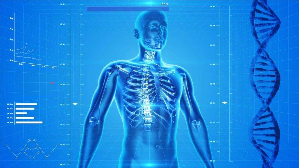 Elektrosmog Körper